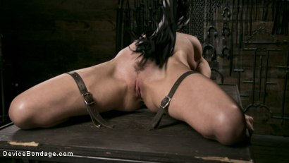 Photo number 8 from Newcomer Melissa Moore Submits to Screaming Bondage shot for Device Bondage on Kink.com. Featuring Melissa Moore in hardcore BDSM & Fetish porn.