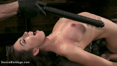 Photo number 9 from Newcomer Melissa Moore Submits to Screaming Bondage shot for Device Bondage on Kink.com. Featuring Melissa Moore in hardcore BDSM & Fetish porn.