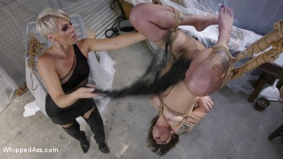 Photo number 10 from The Making of a Good Girl: Renovator Becomes Submissive Anal Whore  shot for Whipped Ass on Kink.com. Featuring Helena Locke and Kacie Castle in hardcore BDSM & Fetish porn.