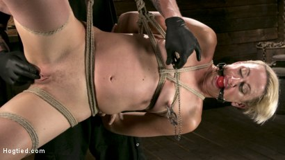 Photo number 14 from Blonde Goddess is Destroyed in Devastating Predicament Bondage shot for Hogtied on Kink.com. Featuring Dylan Ryan and The Pope in hardcore BDSM & Fetish porn.