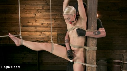 Photo number 8 from Blonde Goddess is Destroyed in Devastating Predicament Bondage shot for Hogtied on Kink.com. Featuring Dylan Ryan and The Pope in hardcore BDSM & Fetish porn.