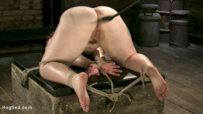 Photo number 11 from Pain Slut in Extreme Bondage Suffers from Brutal Torment shot for Hogtied on Kink.com. Featuring Barbary Rose and The Pope in hardcore BDSM & Fetish porn.