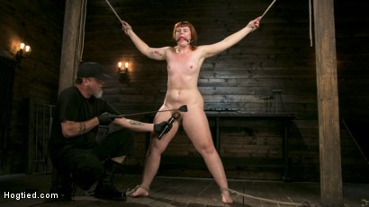 Photo number 4 from Pain Slut in Extreme Bondage Suffers from Brutal Torment shot for Hogtied on Kink.com. Featuring Barbary Rose and The Pope in hardcore BDSM & Fetish porn.