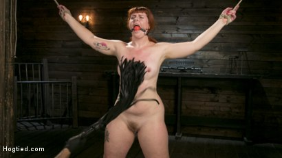 Photo number 7 from Pain Slut in Extreme Bondage Suffers from Brutal Torment shot for Hogtied on Kink.com. Featuring Barbary Rose and The Pope in hardcore BDSM & Fetish porn.