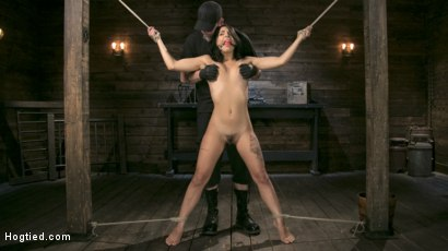 Photo number 1 from Tiny Sexual Plaything Gina Valentina Tied and Fucked in Rope Bondage!  shot for Hogtied on Kink.com. Featuring Gina Valentina and The Pope in hardcore BDSM & Fetish porn.
