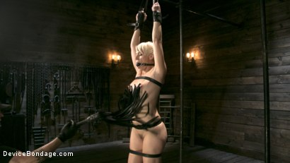 Photo number 2 from Captured Cougar shot for Device Bondage on Kink.com. Featuring Helena Locke and The Pope in hardcore BDSM & Fetish porn.