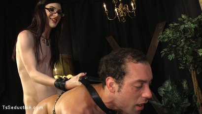 Photo number 14 from Stefani Special doms and fucks DJ, her willing handcuffed slave shot for TS Seduction on Kink.com. Featuring Stefani Special and DJ in hardcore BDSM & Fetish porn.
