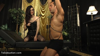 Photo number 20 from Stefani Special doms and fucks DJ, her willing handcuffed slave shot for TS Seduction on Kink.com. Featuring Stefani Special and DJ in hardcore BDSM & Fetish porn.