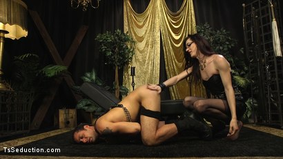 Photo number 3 from Stefani Special doms and fucks DJ, her willing handcuffed slave shot for TS Seduction on Kink.com. Featuring Stefani Special and DJ in hardcore BDSM & Fetish porn.
