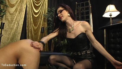 Photo number 4 from Stefani Special doms and fucks DJ, her willing handcuffed slave shot for TS Seduction on Kink.com. Featuring Stefani Special and DJ in hardcore BDSM & Fetish porn.