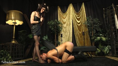 Photo number 5 from Stefani Special doms and fucks DJ, her willing handcuffed slave shot for TS Seduction on Kink.com. Featuring Stefani Special and DJ in hardcore BDSM & Fetish porn.