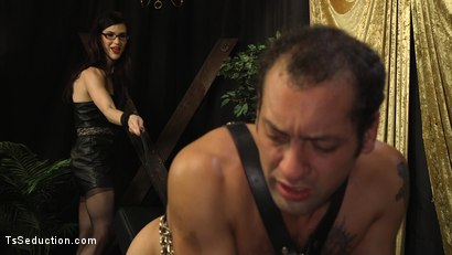 Photo number 6 from Stefani Special doms and fucks DJ, her willing handcuffed slave shot for TS Seduction on Kink.com. Featuring Stefani Special and DJ in hardcore BDSM & Fetish porn.