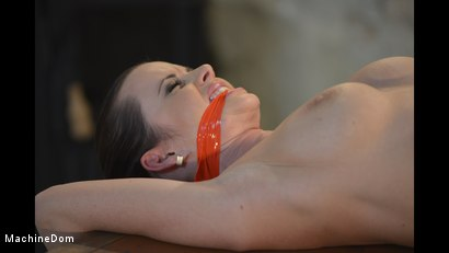 Photo number 14 from Cindy Bound, Gagged, and Machine-Fucked shot for Machine Dom on Kink.com. Featuring Cindy Dollar and Ar in hardcore BDSM & Fetish porn.