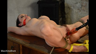 Photo number 8 from Cindy Bound, Gagged, and Machine-Fucked shot for Machine Dom on Kink.com. Featuring Cindy Dollar and Ar in hardcore BDSM & Fetish porn.