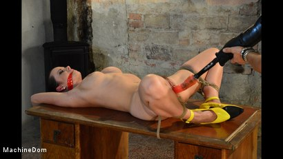 Photo number 9 from Cindy Bound, Gagged, and Machine-Fucked shot for Machine Dom on Kink.com. Featuring Cindy Dollar and Ar in hardcore BDSM & Fetish porn.