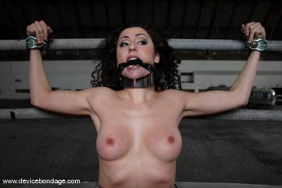 Photo number 3 from The Armory Shoot shot for Device Bondage on Kink.com. Featuring Peter and Princess Donna Dolore in hardcore BDSM & Fetish porn.