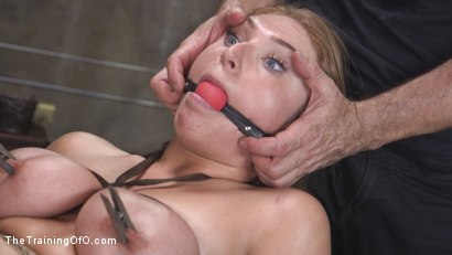 Photo number 35 from Newbie Skylar Snow Endures and Indulges  shot for The Training Of O on Kink.com. Featuring Skylar Snow  and Small Hands in hardcore BDSM & Fetish porn.