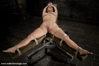 Photo number 2 from The Sarge meets Mia Bangg shot for Water Bondage on Kink.com. Featuring Mia Bangg in hardcore BDSM & Fetish porn.