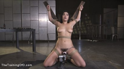 Photo number 16 from Karlee Grey, Begging in Bondage shot for The Training Of O on Kink.com. Featuring Karlee Grey and Ramon Nomar in hardcore BDSM & Fetish porn.