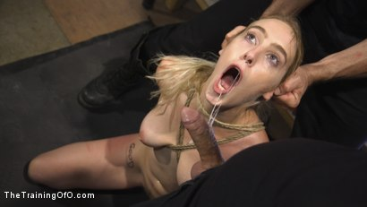Photo number 2 from Gorgeous Blonde Cadence Lux is a Good Whore shot for The Training Of O on Kink.com. Featuring Tommy Pistol and Cadence Lux in hardcore BDSM & Fetish porn.