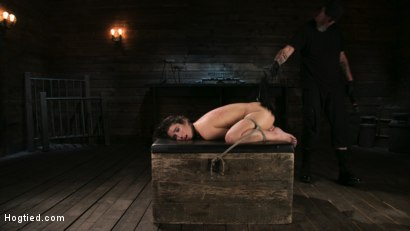 Photo number 17 from Girl Next Door Serena Blair Restrained and Made to Cum in Rope Bondage shot for Hogtied on Kink.com. Featuring The Pope and Serena Blair in hardcore BDSM & Fetish porn.