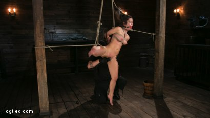 Photo number 3 from Girl Next Door Serena Blair Restrained and Made to Cum in Rope Bondage shot for Hogtied on Kink.com. Featuring The Pope and Serena Blair in hardcore BDSM & Fetish porn.