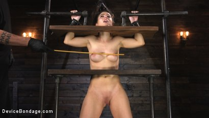 Photo number 2 from Petite Slut Serena Blair Punished and Made to Cum in Metal Bondage!! shot for Device Bondage on Kink.com. Featuring The Pope and Serena Blair in hardcore BDSM & Fetish porn.