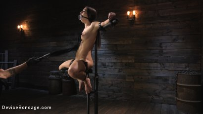 Photo number 9 from Petite Slut Serena Blair Punished and Made to Cum in Metal Bondage!! shot for Device Bondage on Kink.com. Featuring The Pope and Serena Blair in hardcore BDSM & Fetish porn.