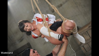 Photo number 2 from Swinging High shot for Wasteland on Kink.com. Featuring Nyssa Nevers and David Lawrence in hardcore BDSM & Fetish porn.