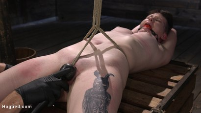 Photo number 10 from Pain Slut Paige Pierce Submits to Rope Bondage and Corporal Punishment shot for Hogtied on Kink.com. Featuring Paige Pierce and The Pope in hardcore BDSM & Fetish porn.