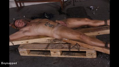 Photo number 2 from Made To Suck His First Cock shot for Boynapped on Kink.com. Featuring Aiden Jason and Theo Reid in hardcore BDSM & Fetish porn.