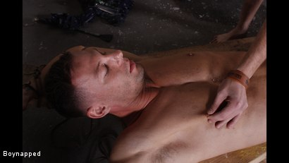 Photo number 6 from Made To Suck His First Cock shot for Boynapped on Kink.com. Featuring Aiden Jason and Theo Reid in hardcore BDSM & Fetish porn.