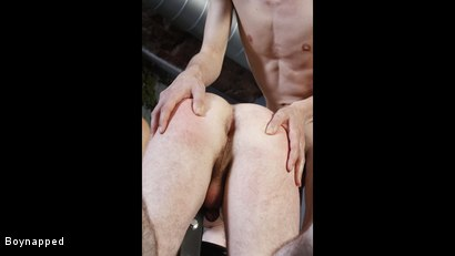 Photo number 15 from Shayne Gets A Beating From Sean shot for Boynapped on Kink.com. Featuring Shayne Green and Sean McKenzie in hardcore BDSM & Fetish porn.
