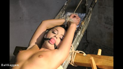 Photo number 7 from Daphne Klyde Ballgagged And Penetrated With A Big Dildo shot for Ball Gaggers on Kink.com. Featuring Ar and Daphne Klyde in hardcore BDSM & Fetish porn.