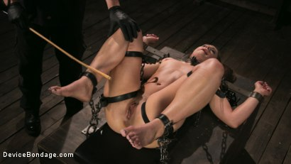 Photo number 6 from Cheyenne Jewel Punished with Unwilling Orgasms and Mean Metal Bondage! shot for Device Bondage on Kink.com. Featuring Cheyenne Jewel and The Pope in hardcore BDSM & Fetish porn.