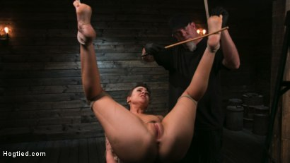 Photo number 13 from Pain Slut Lilith Luxe Cums Relentlessly from Torment and Rope Bondage! shot for Hogtied on Kink.com. Featuring Lilith Luxe and The Pope in hardcore BDSM & Fetish porn.