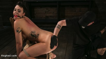 Photo number 2 from Pain Slut Lilith Luxe Cums Relentlessly from Torment and Rope Bondage! shot for Hogtied on Kink.com. Featuring Lilith Luxe and The Pope in hardcore BDSM & Fetish porn.