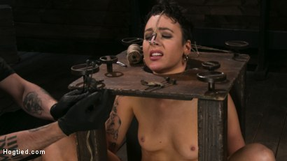 Photo number 6 from Pain Slut Lilith Luxe Cums Relentlessly from Torment and Rope Bondage! shot for Hogtied on Kink.com. Featuring Lilith Luxe and The Pope in hardcore BDSM & Fetish porn.