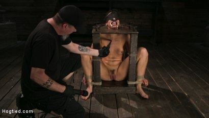 Photo number 7 from Pain Slut Lilith Luxe Cums Relentlessly from Torment and Rope Bondage! shot for Hogtied on Kink.com. Featuring Lilith Luxe and The Pope in hardcore BDSM & Fetish porn.