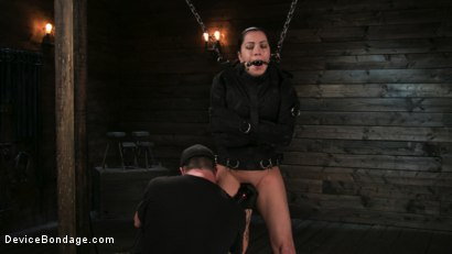 Photo number 3 from Newbie Pain Slut Cassandra Cain Coerced with Orgasms and Metal Bondage shot for Device Bondage on Kink.com. Featuring Cassandra Cain and The Pope in hardcore BDSM & Fetish porn.