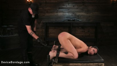 Photo number 4 from Newbie Pain Slut Cassandra Cain Coerced with Orgasms and Metal Bondage shot for Device Bondage on Kink.com. Featuring Cassandra Cain and The Pope in hardcore BDSM & Fetish porn.