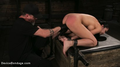 Photo number 8 from Newbie Pain Slut Cassandra Cain Coerced with Orgasms and Metal Bondage shot for Device Bondage on Kink.com. Featuring Cassandra Cain and The Pope in hardcore BDSM & Fetish porn.