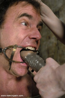 Photo number 12 from Claire Adams and Wild Bill shot for Men In Pain on Kink.com. Featuring Claire Adams and Wild Bill in hardcore BDSM & Fetish porn.