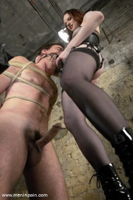 Photo number 13 from Claire Adams and Wild Bill shot for Men In Pain on Kink.com. Featuring Claire Adams and Wild Bill in hardcore BDSM & Fetish porn.