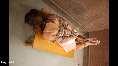 Photo number 9 from Cindy Gets Hogtied, Cleavegagged, And Stripped shot for Hogtied Up on Kink.com. Featuring Ar and Denisel in hardcore BDSM & Fetish porn.