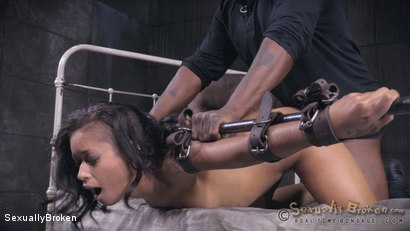 Photo number 16 from Skin Diamond's LAST BOY GIRL SHOOT is brutal sex. shot for Sexually Broken on Kink.com. Featuring Skin Diamond, Jack Hammer and Matt Williams in hardcore BDSM & Fetish porn.