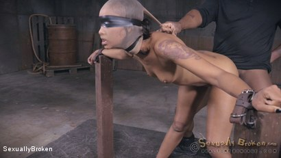 Photo number 7 from Skin Diamond's LAST BOY GIRL SHOOT is brutal sex. shot for Sexually Broken on Kink.com. Featuring Skin Diamond, Jack Hammer and Matt Williams in hardcore BDSM & Fetish porn.