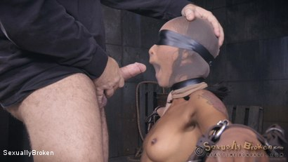 Photo number 9 from Skin Diamond's LAST BOY GIRL SHOOT is brutal sex. shot for Sexually Broken on Kink.com. Featuring Skin Diamond, Jack Hammer and Matt Williams in hardcore BDSM & Fetish porn.