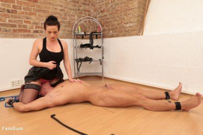 Photo number 8 from Thomas Can't Stand Up shot for FemDum on Kink.com. Featuring Eliza and Thomas in hardcore BDSM & Fetish porn.