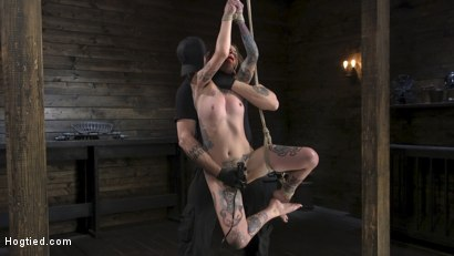 Photo number 3 from Alt Dream Girl Krysta Kaos Abused and Fucked in Extreme Rope Bondage!! shot for Hogtied on Kink.com. Featuring The Pope and Krysta Kaos in hardcore BDSM & Fetish porn.